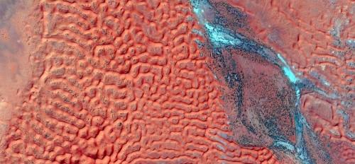 czerwone-wydmy-i-niebieska-rzeka-fantazja-abstrakcyjne-pejzaze-pustyn-afryki-abstrakcyjny-naturalizm-abstrakcyjne-pustynie-afryki-z-p