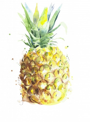 ananasowy-owocowy-handmade-akwarela-obraz-na-bialym-tle