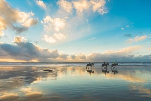 konie-chodzi-na-plazy-przy-zmierzchem