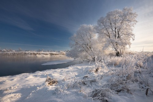 prawdziwa-rosyjska-zima-poranny-mrozny-zimowy-krajobraz-z-olsniewajacym-bialym-sniegiem-i-szronem-rzeka-i-nasyconym-niebieskim-niebem