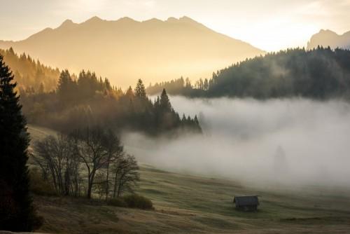 mgla-w-dolinie