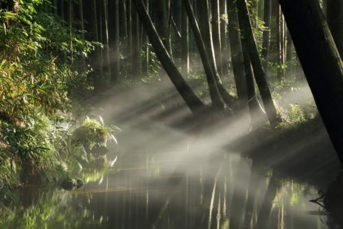 midori-ushigori-rzeka-i-rzeka-mgla-yuza-yamagata-japonia