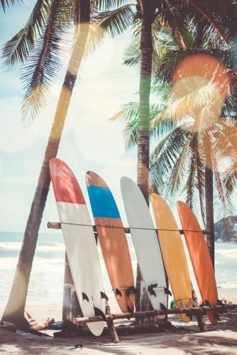 wiele-surfboards-obok-kokosowych-drzew-przy-lato-plaza-z-slonca-swiatlem-i-niebieskiego-nieba-tlem