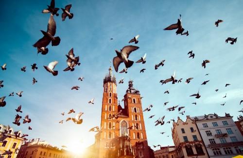 rynek-krakow