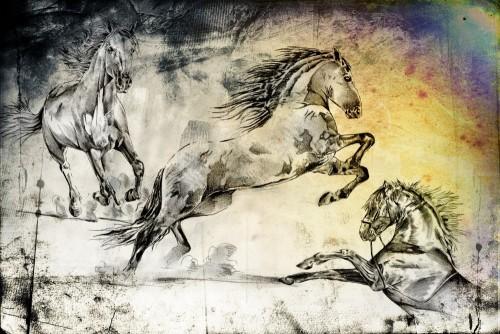 ilustracja-glowa-konia-odrecznego